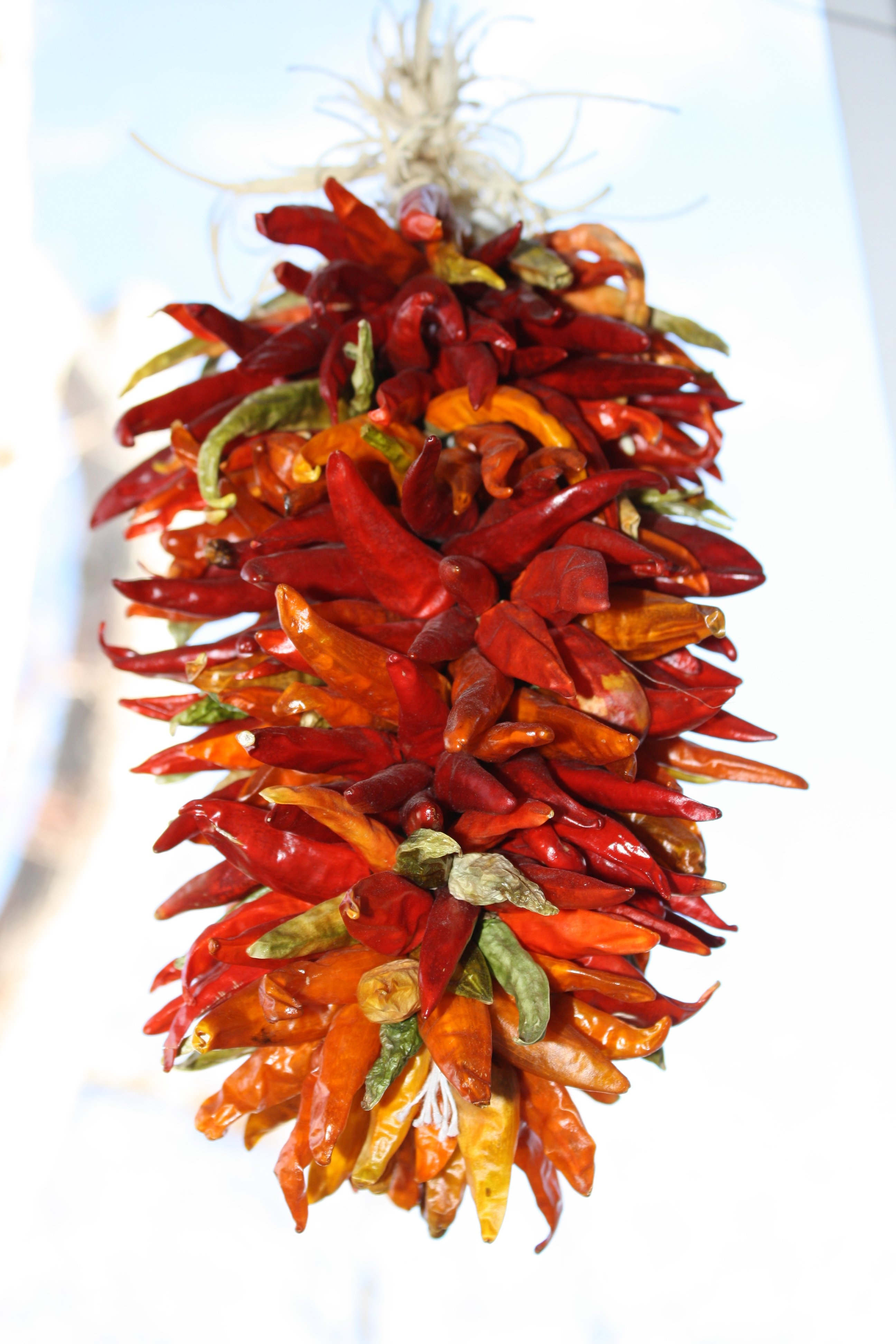Decorative Red Chili Pepper Braid Kitchen Decor2592 X 3888
