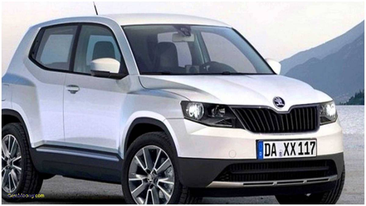 14 The 2019 Skoda Yeti India Egypt Style