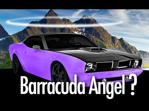 43 Best 2020 Barracuda New Review