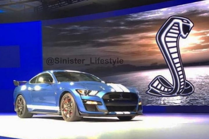 52 The Best 2019 Ford Mustang Gt500 History