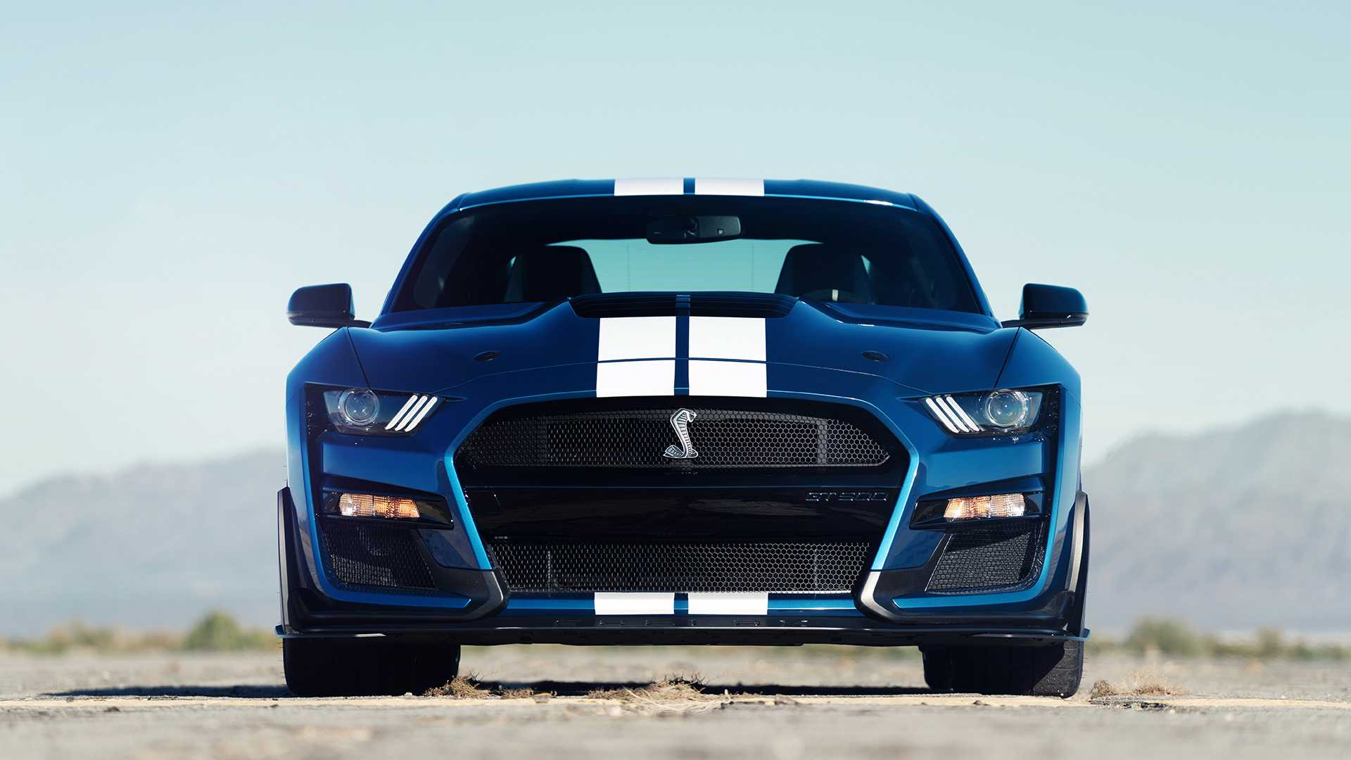 53 A 2020 Ford Mustang Shelby Gt500 New Concept