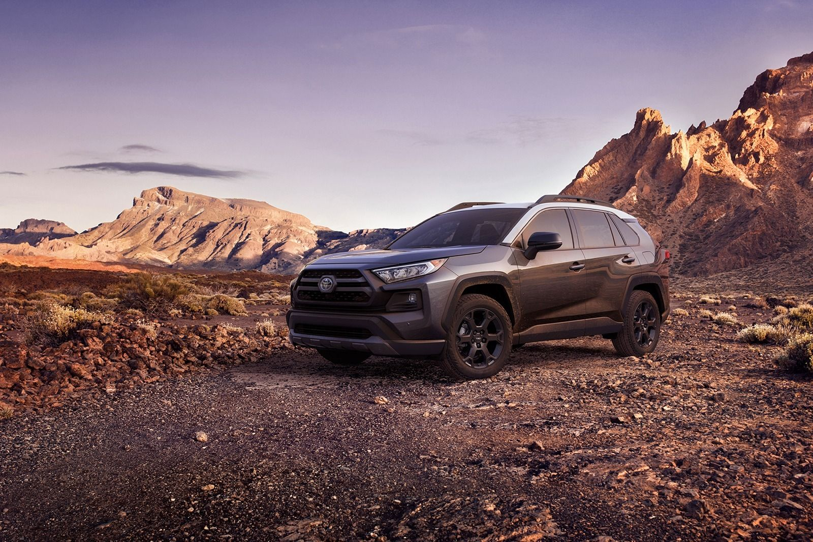 63 New 2020 Toyota RAV4 First Drive