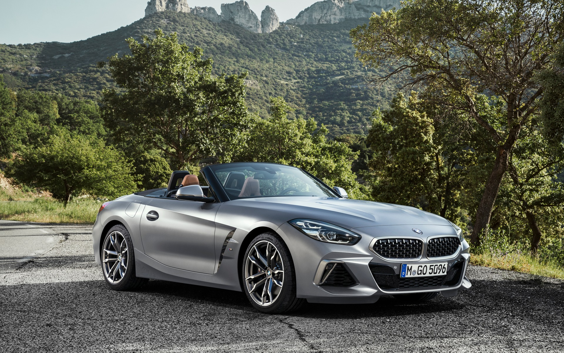 65 The Best 2019 BMW Z4 Roadster Prices