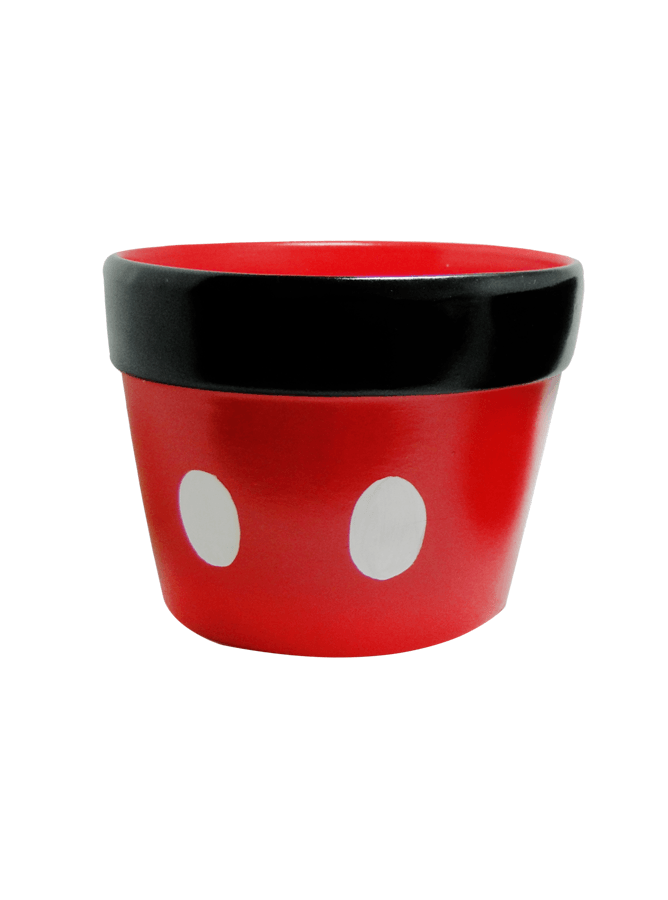 Cachepo Mickey G