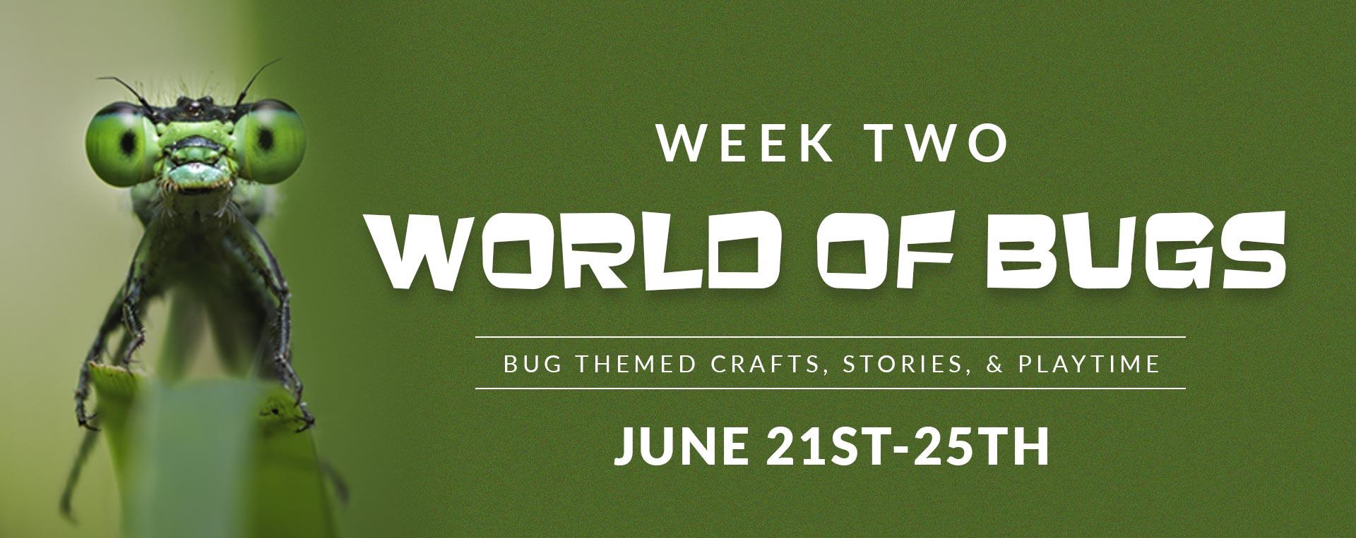 Preschool Camp - Week two - World of Bugs