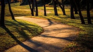 """Golden Path"" by ""Golden Path"" is licensed under ""Golden Path"""