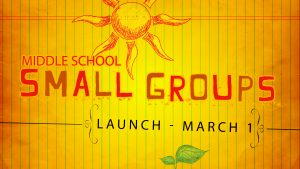 small_groups-PSD