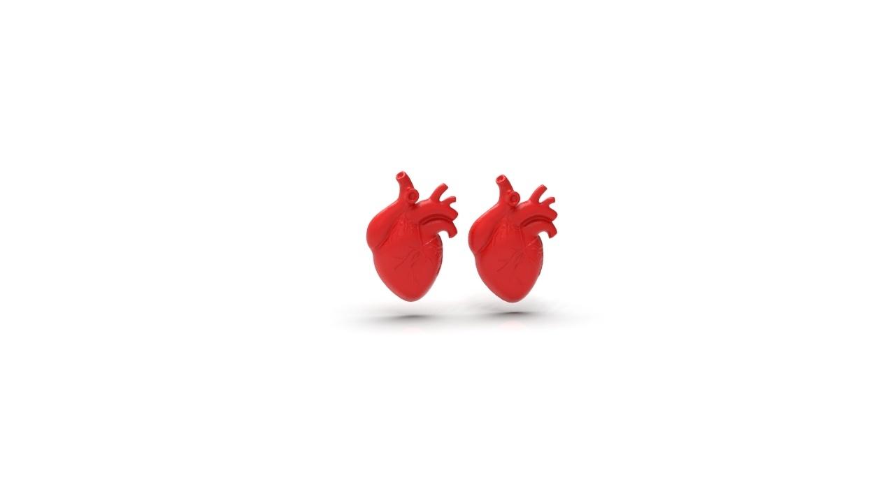 Brincos Human Heart