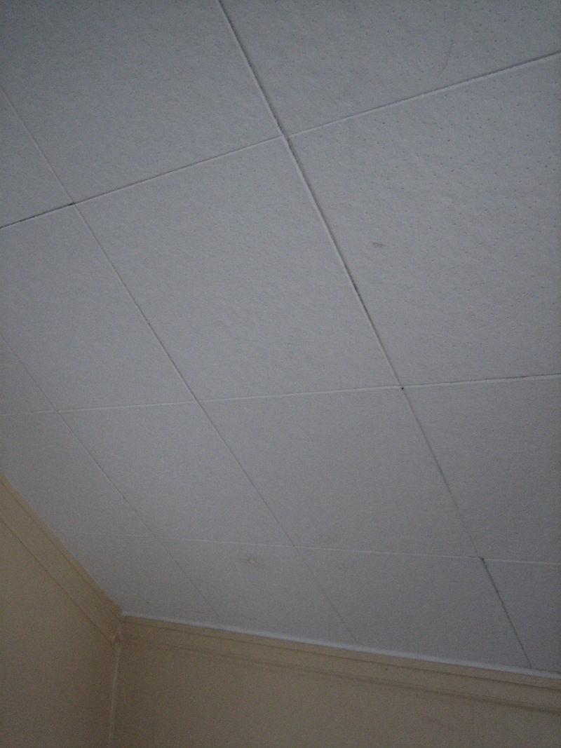 12×12 Ceiling Tiles Contain Asbestos