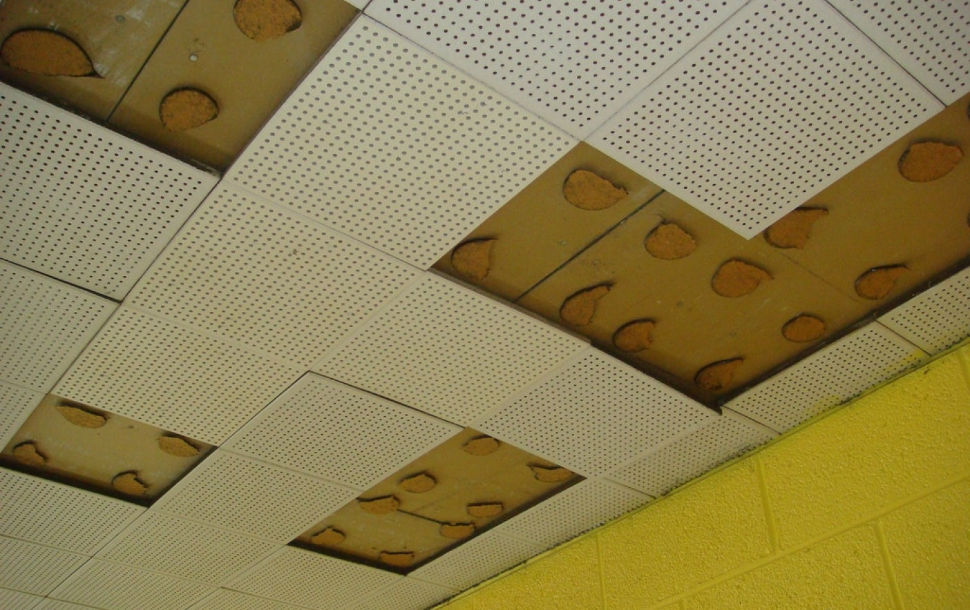 Armstrong Ceiling Tiles Insulation