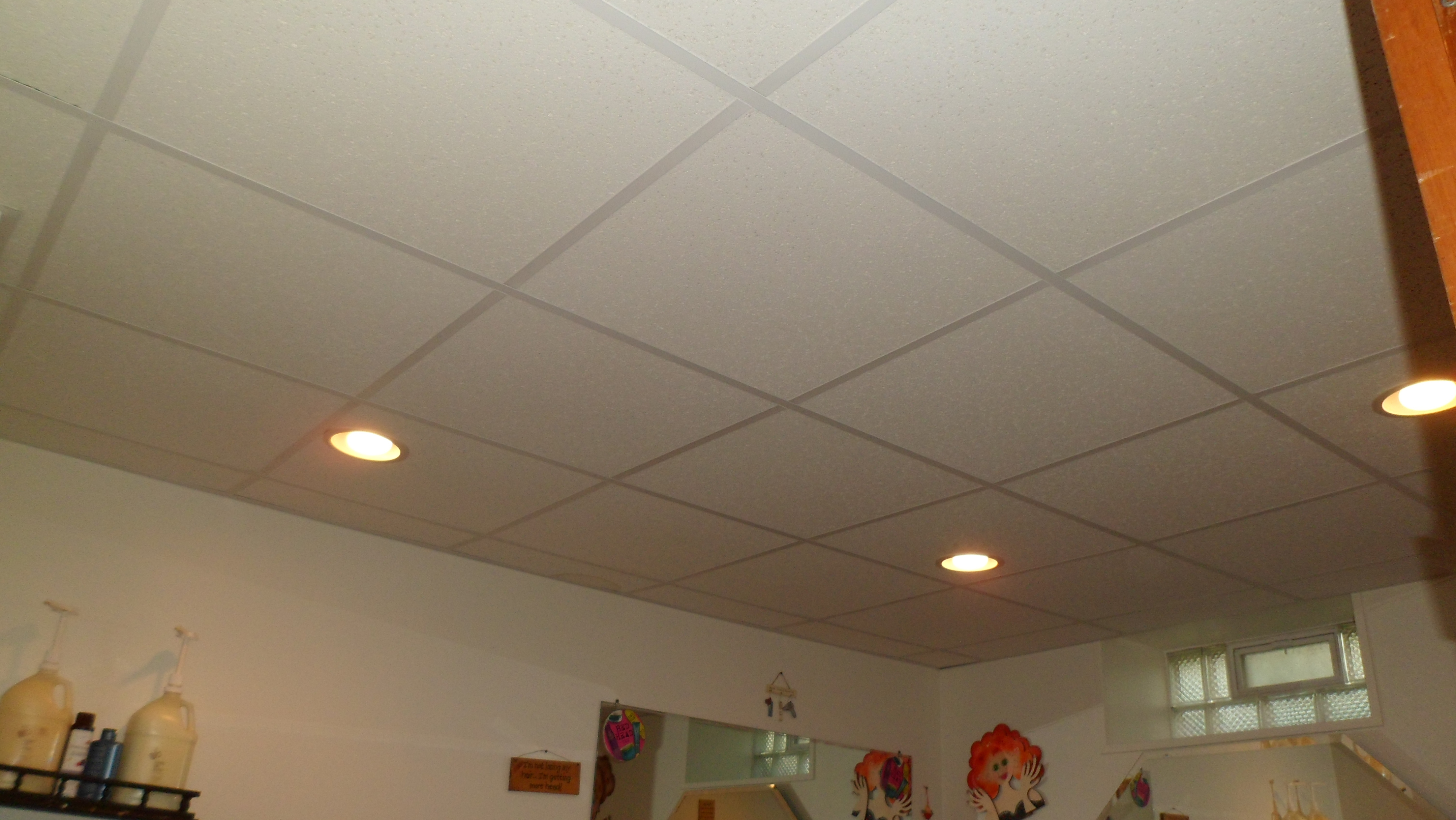Can Lights For Drop Ceiling