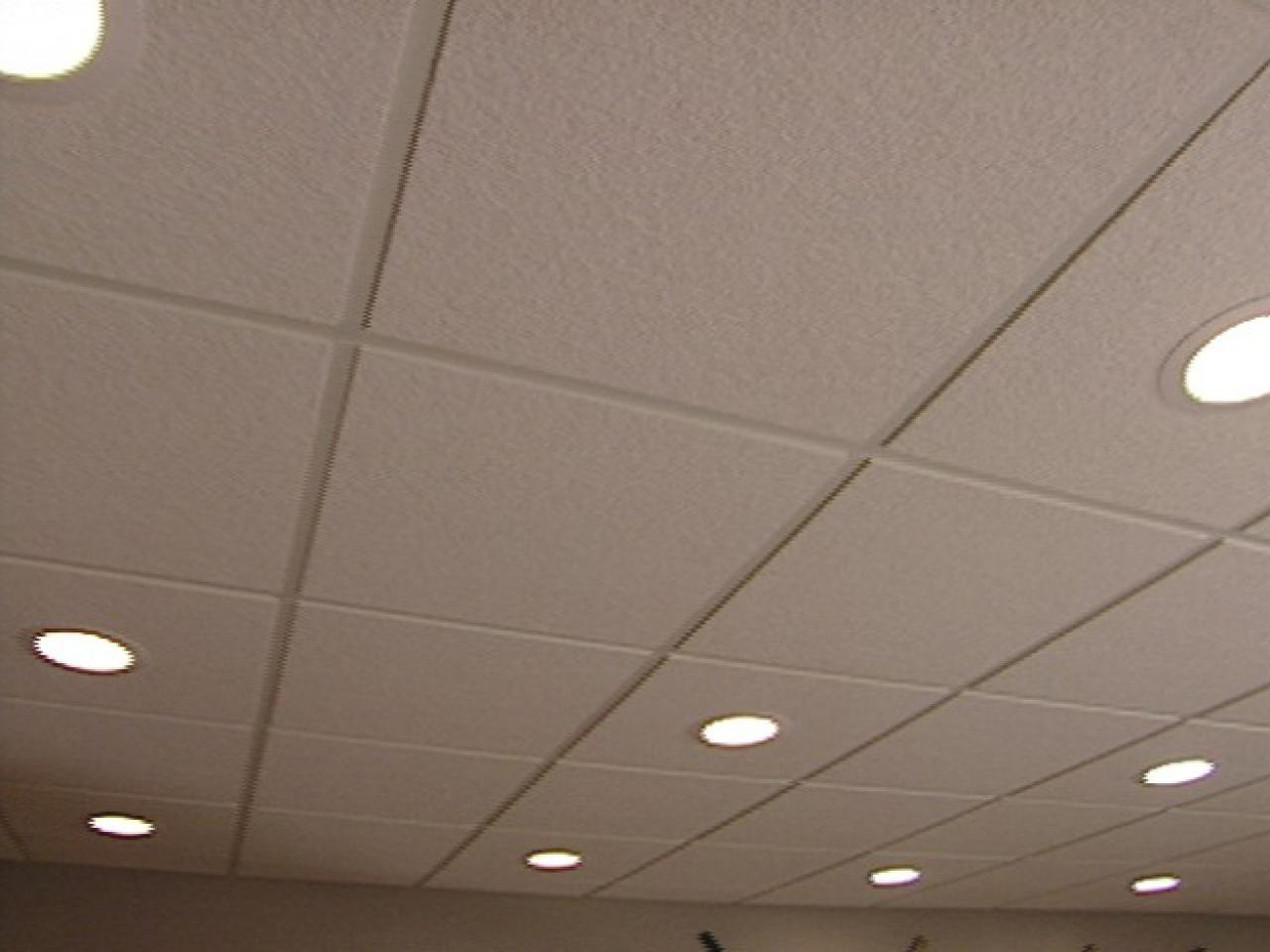 Lights For Suspended Ceiling Grid