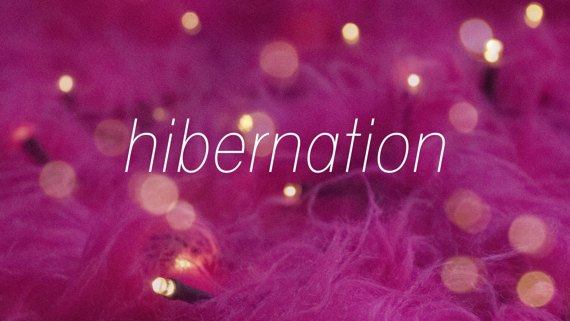 Hibernation poster v1