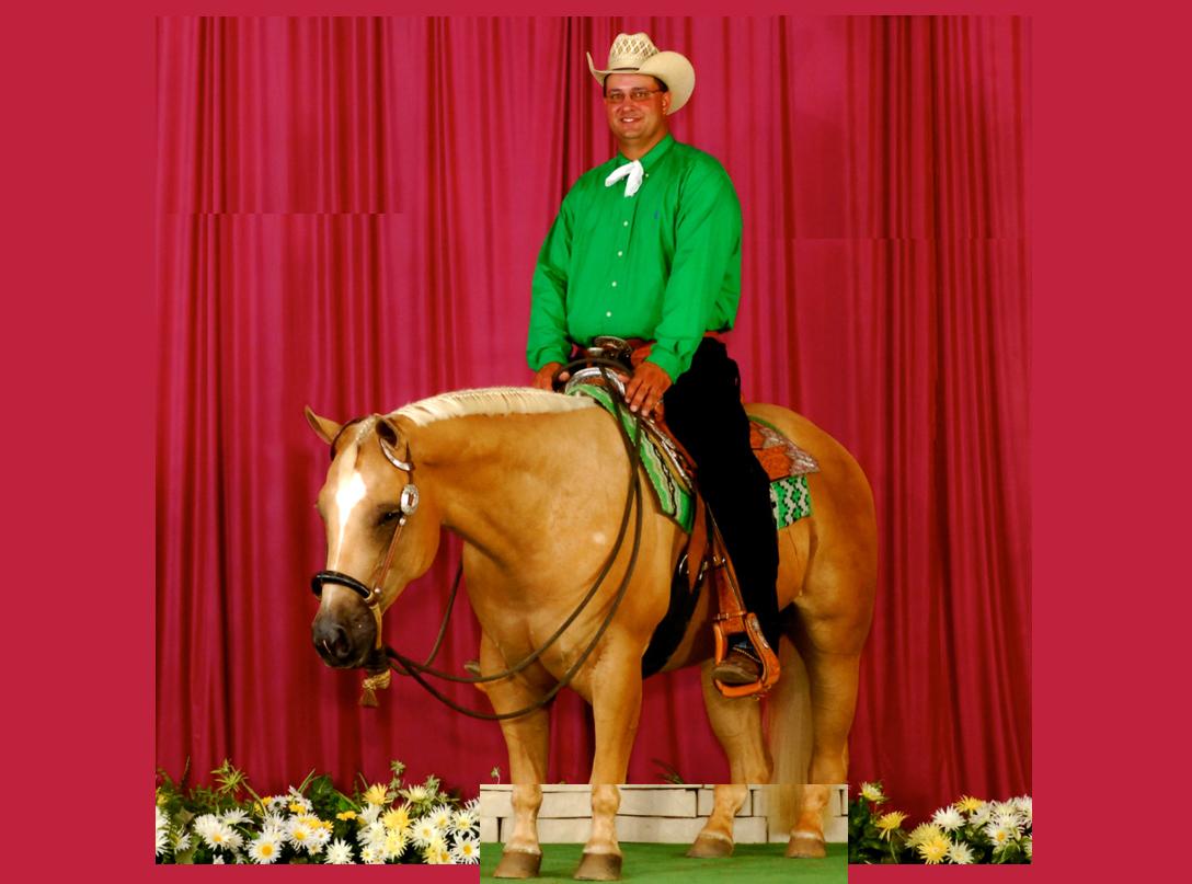 Perfhop horse   man