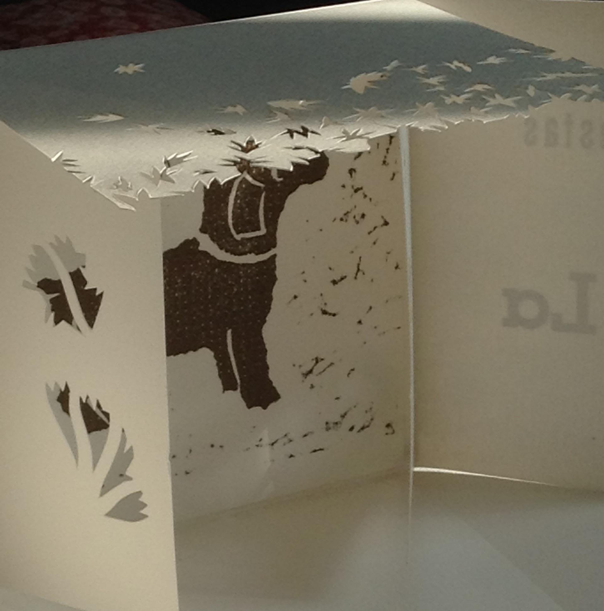 Amira aranda  artist book image