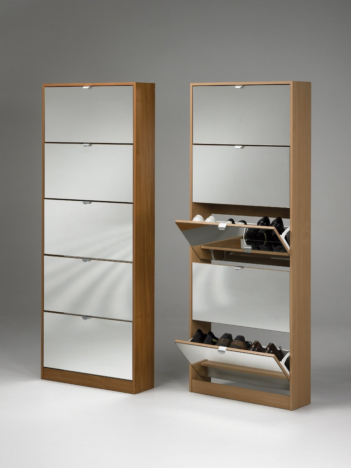 Shoe Storage Cabinet Ideas