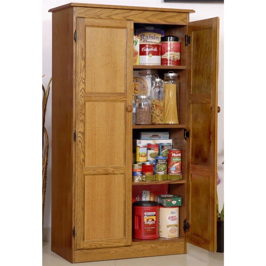 Storage Cabinet With Doors Wood