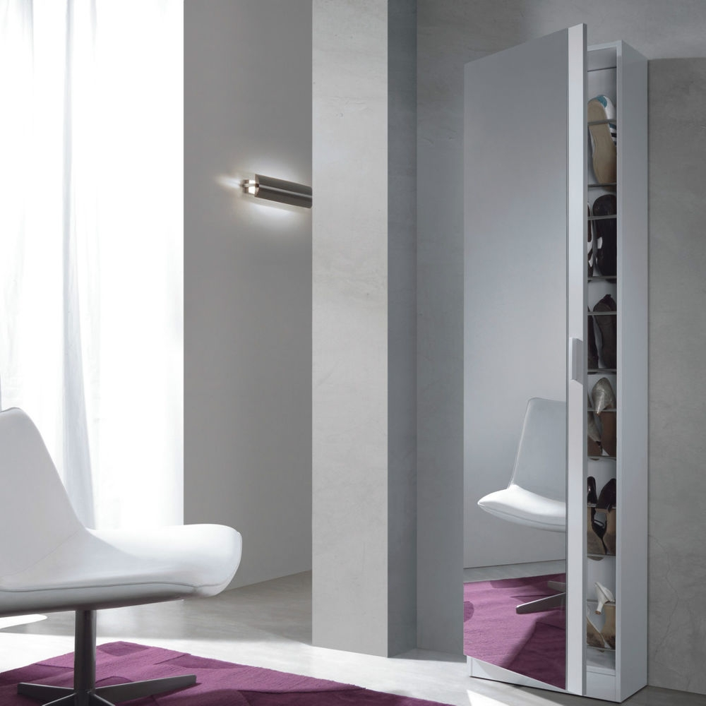 Full Length Mirror Storage Cabinet