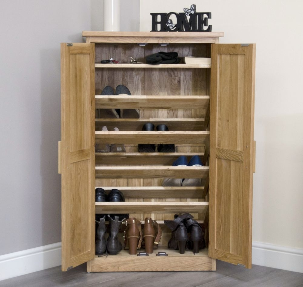 Shallow Shoe Storage Cabinet