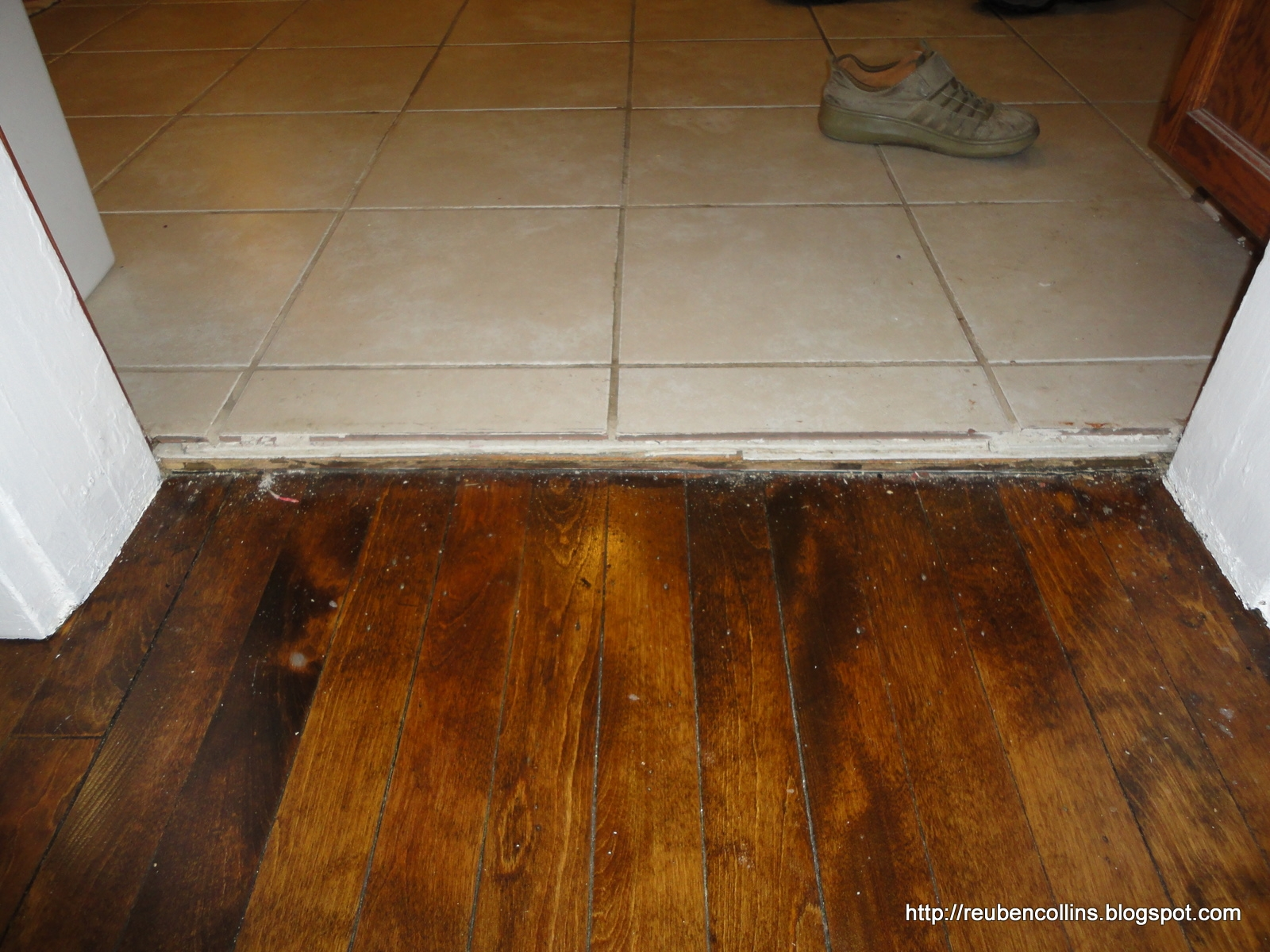 Pictures Of Wood Floors Next To Tile Floors
