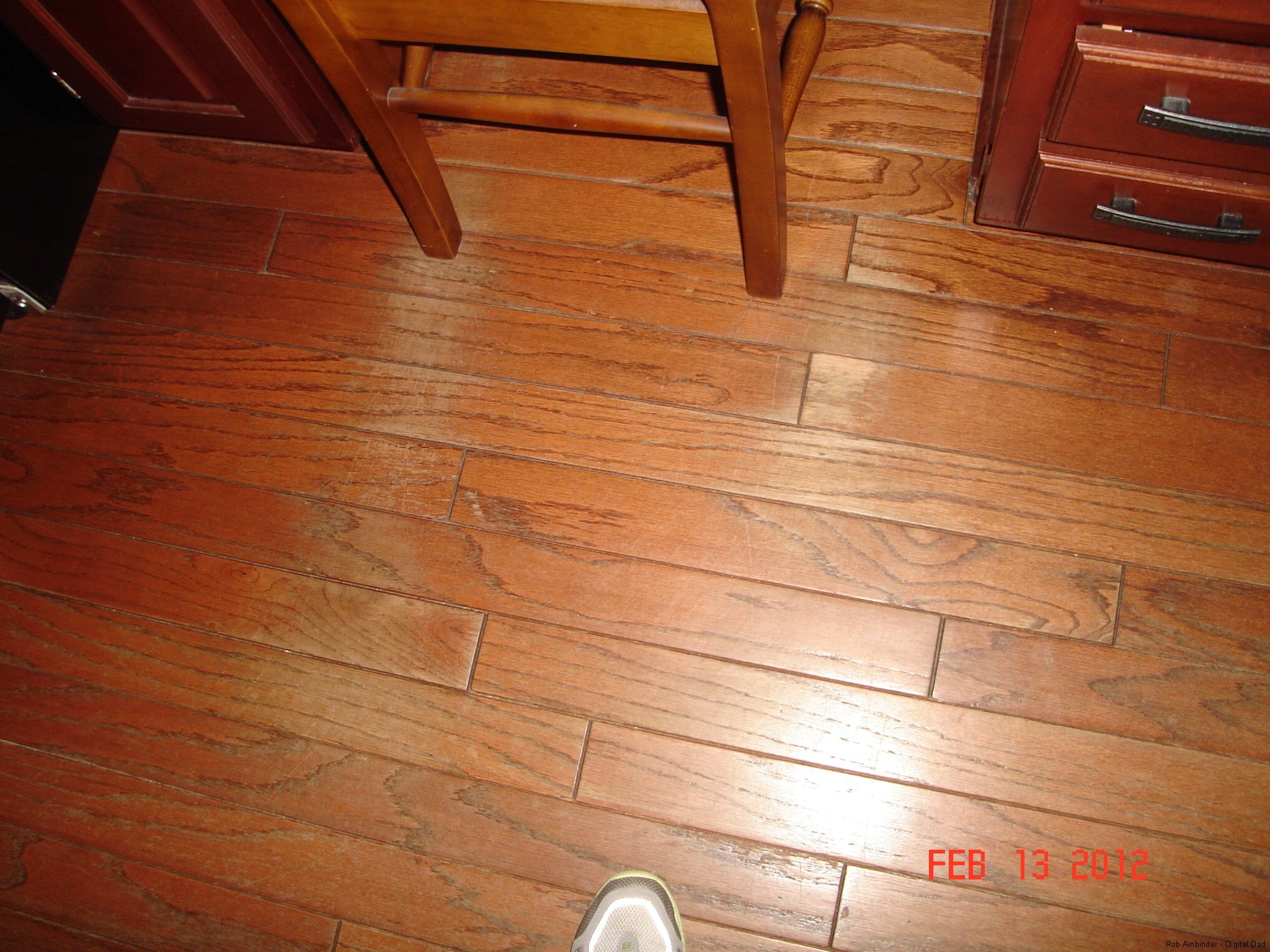 Permalink to Sealed Laminate Wood Floors