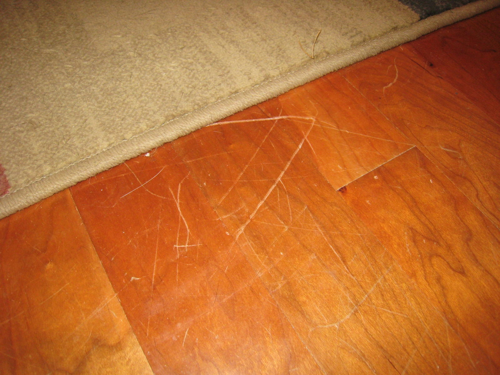 Paste Wax Wood Floor Scratches