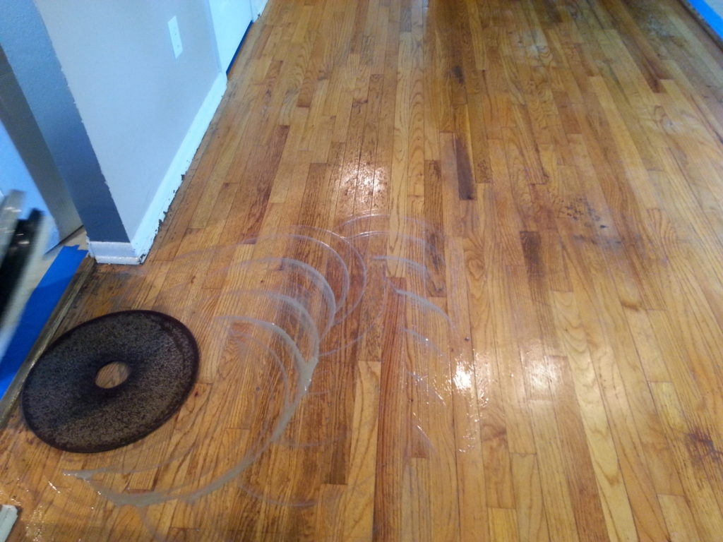 Urine On Wood Floor
