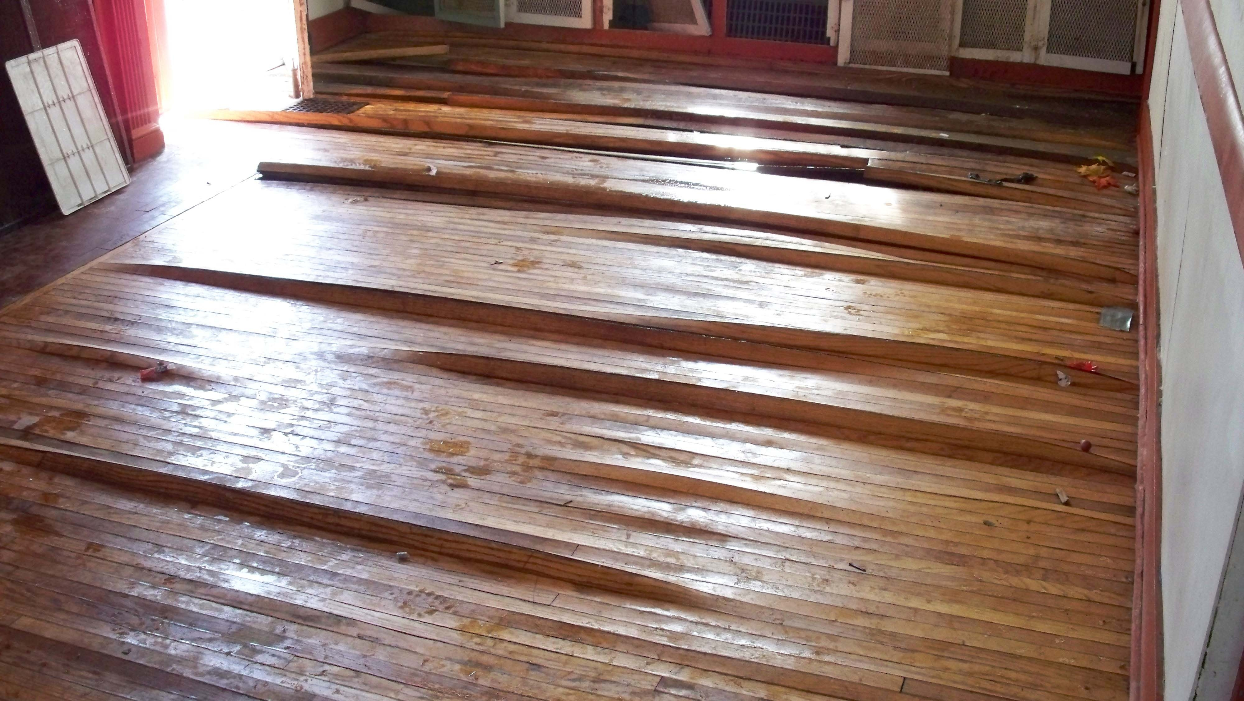 Flooded Engineered Wood Floor