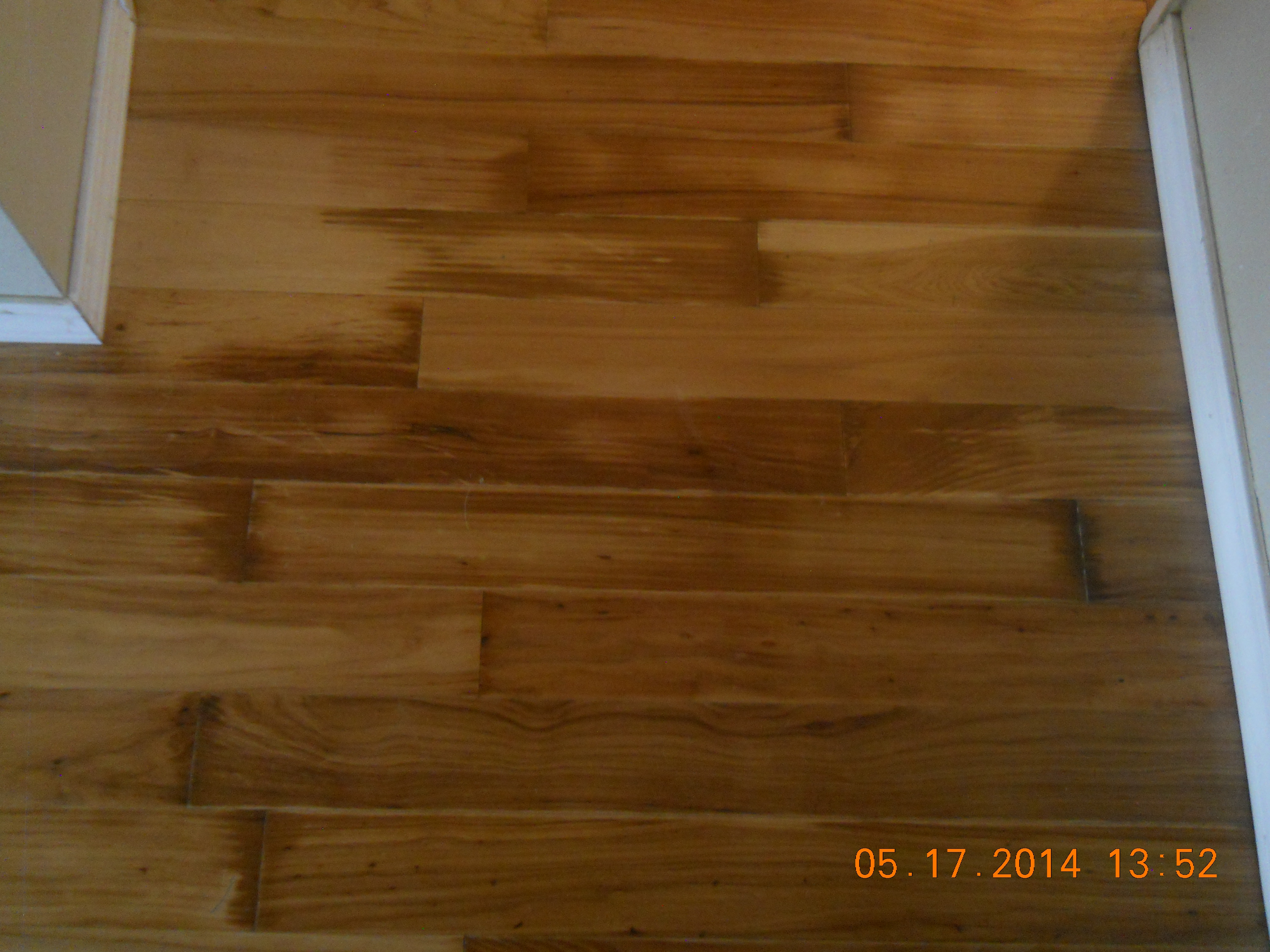 Water Damage To Wood Floors Mold