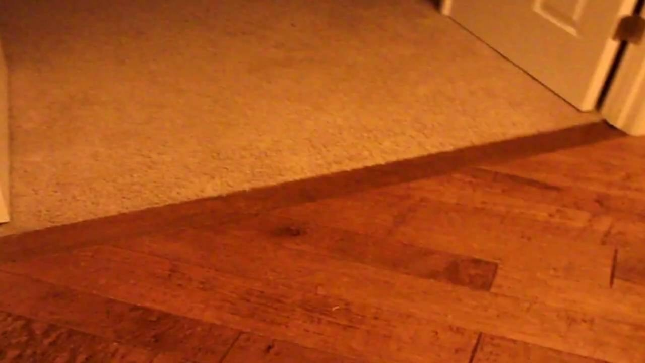 Transition Strip From Wood Floor To Carpet