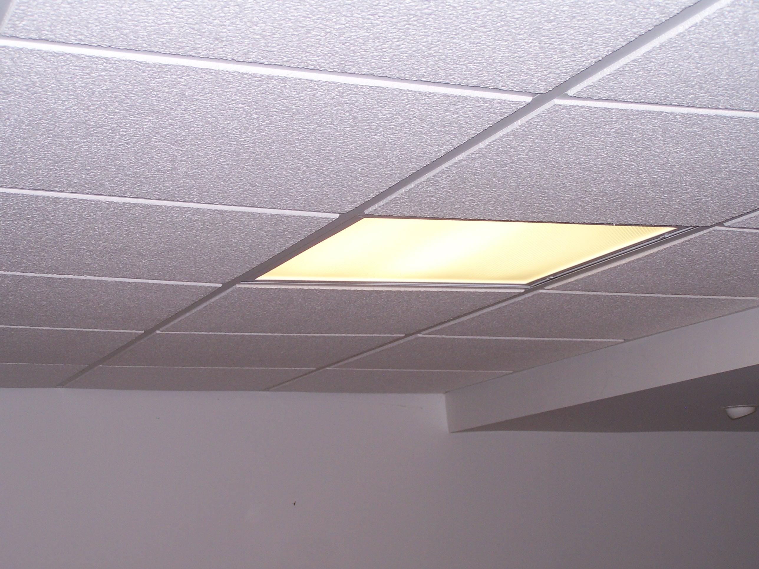 Basement Ceiling Light Covers