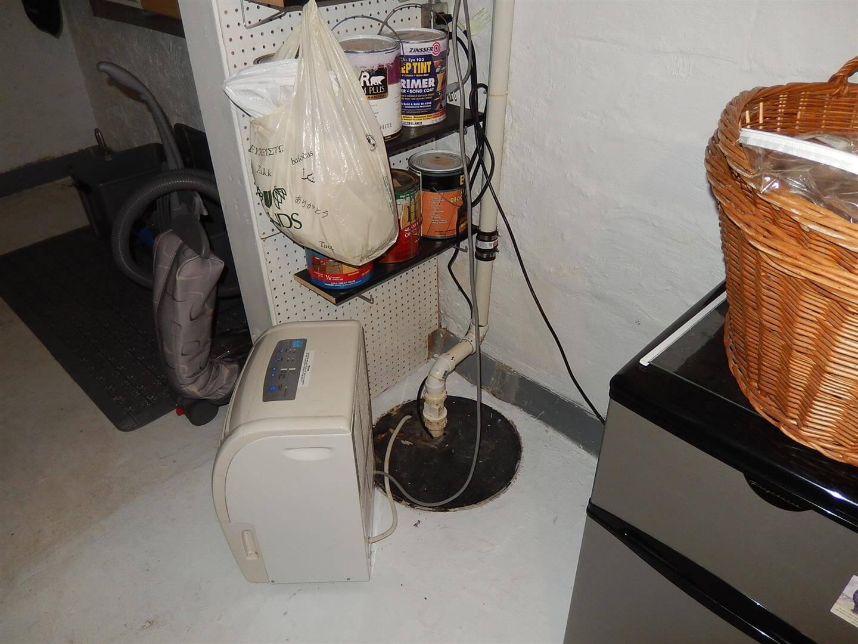 Basement Drain Backflow Preventer
