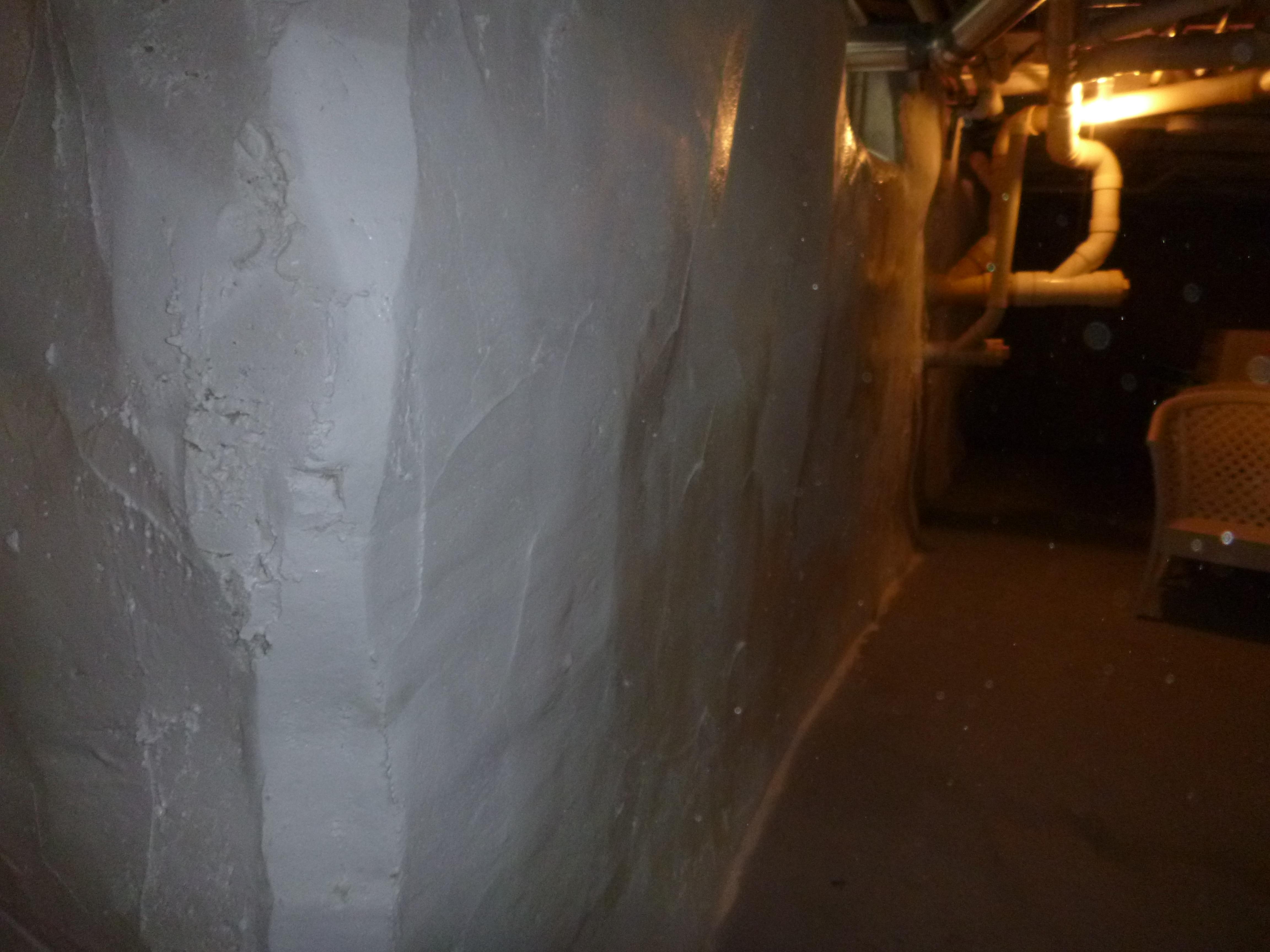 Basement Flood Mold Prevention