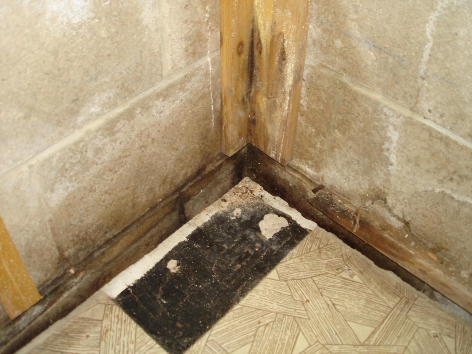 Basement Floor Insulation Forum
