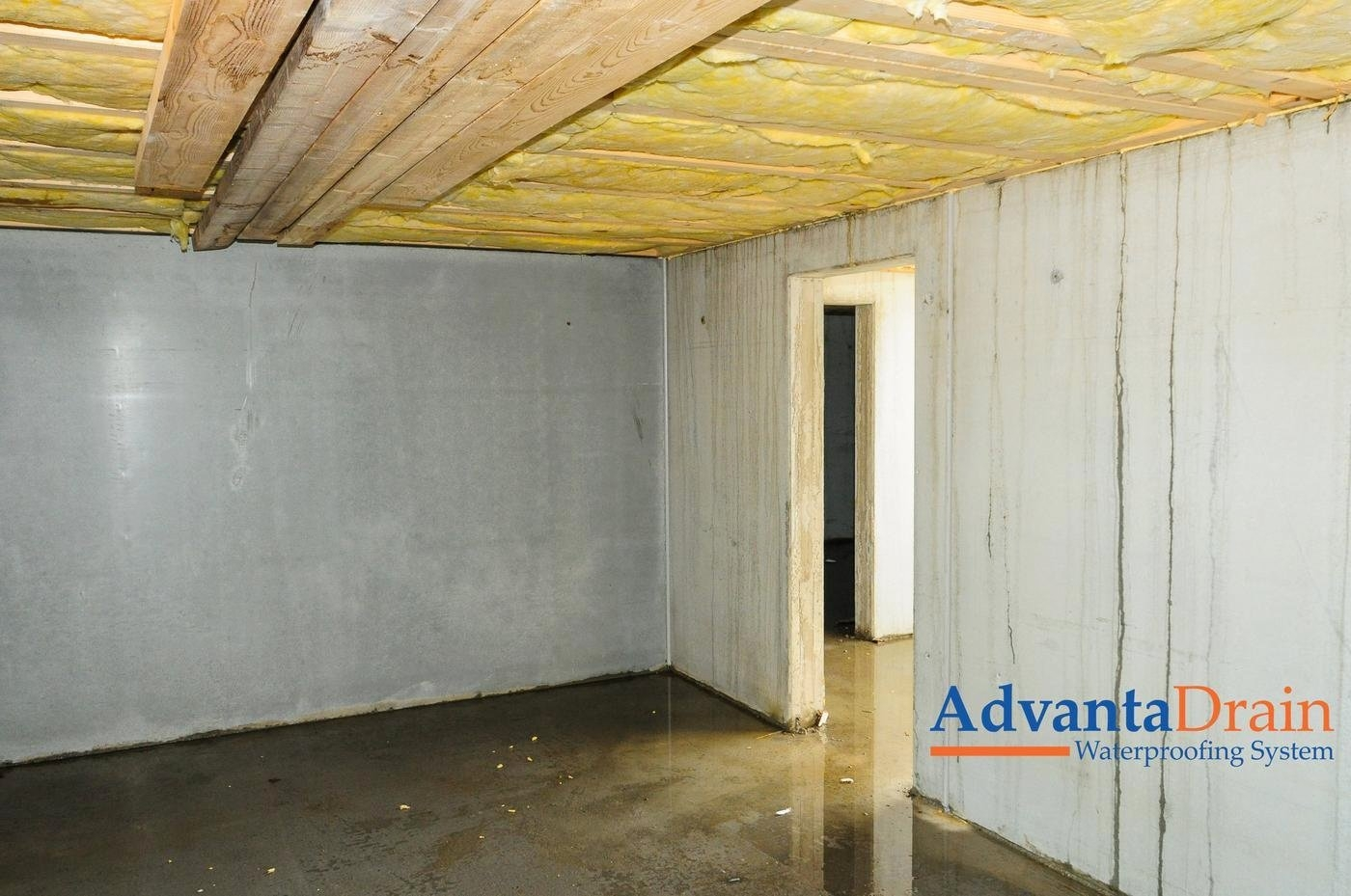 Basement Humidity And Mold Control