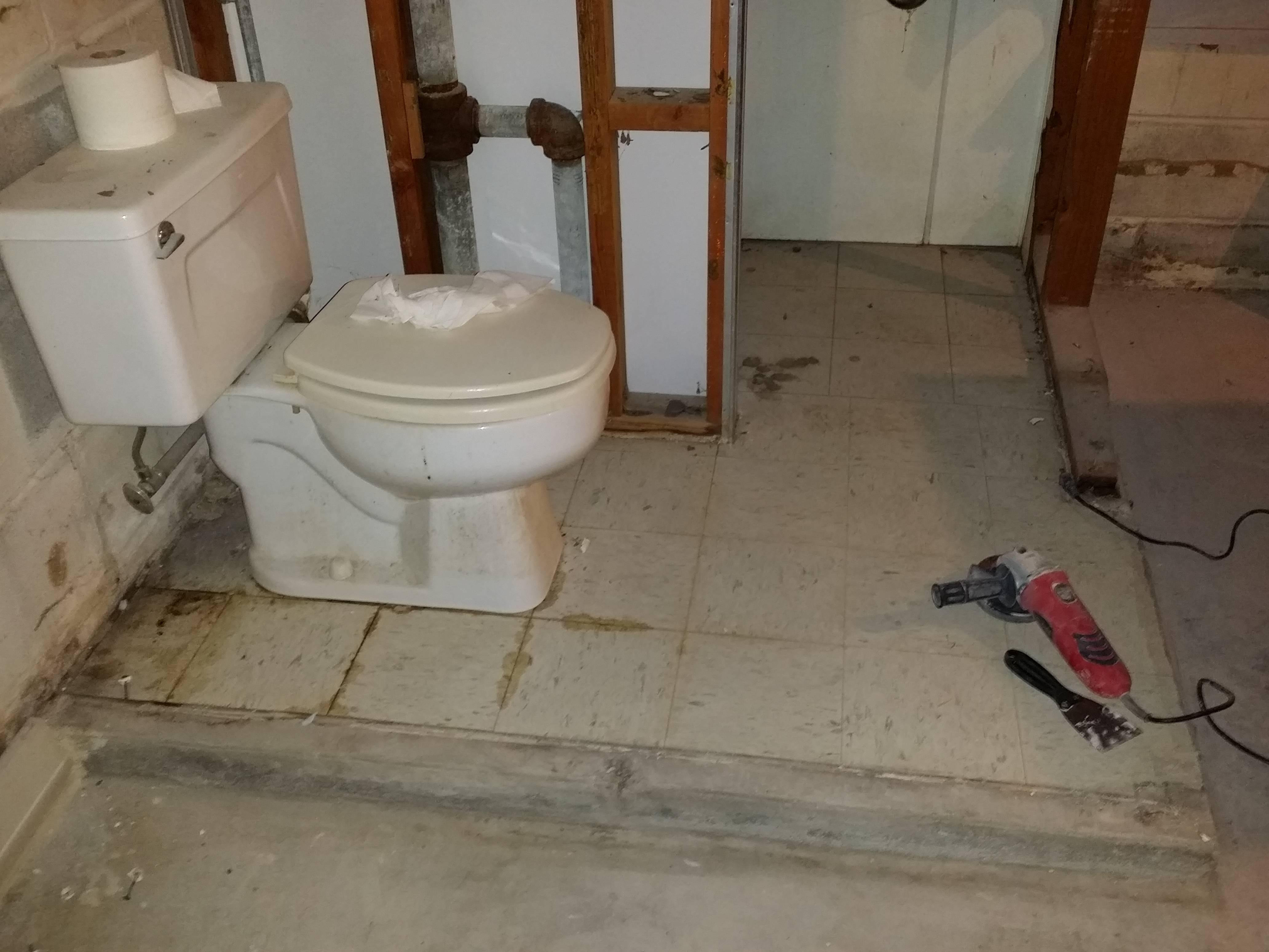 Basement Shower Drain Above Floor