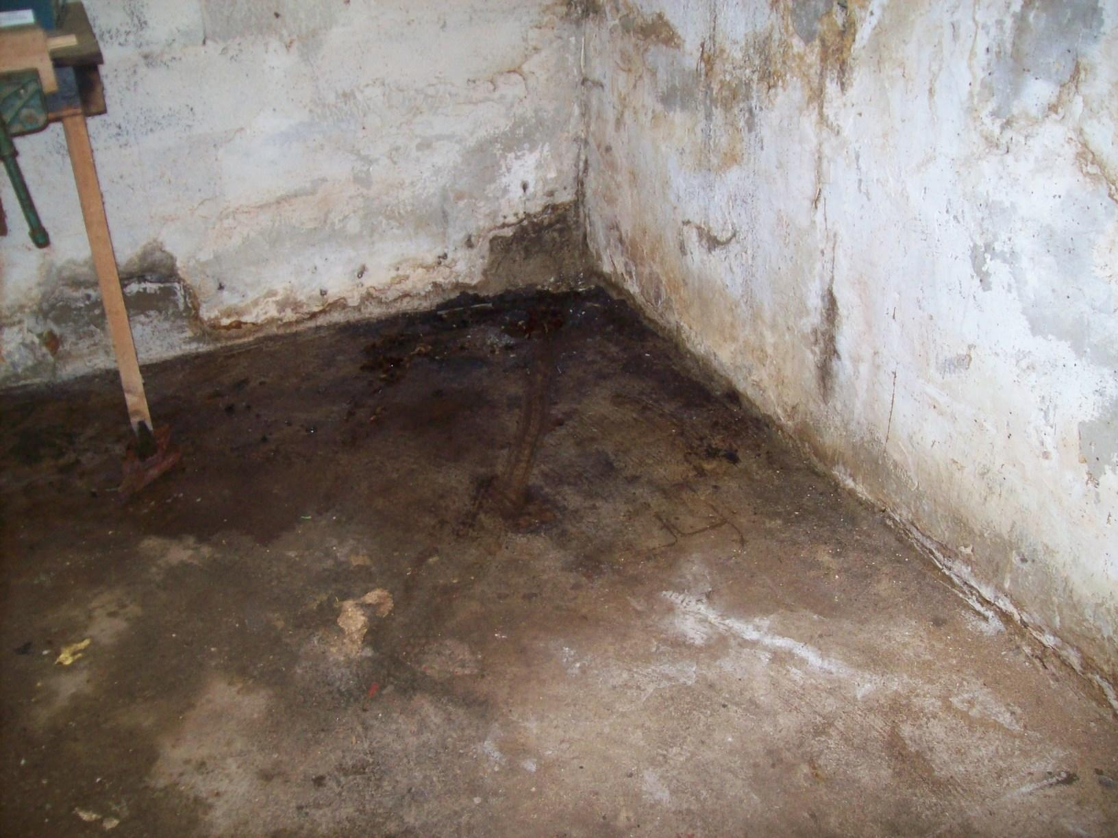 Basement Systems Of Wv Complaints