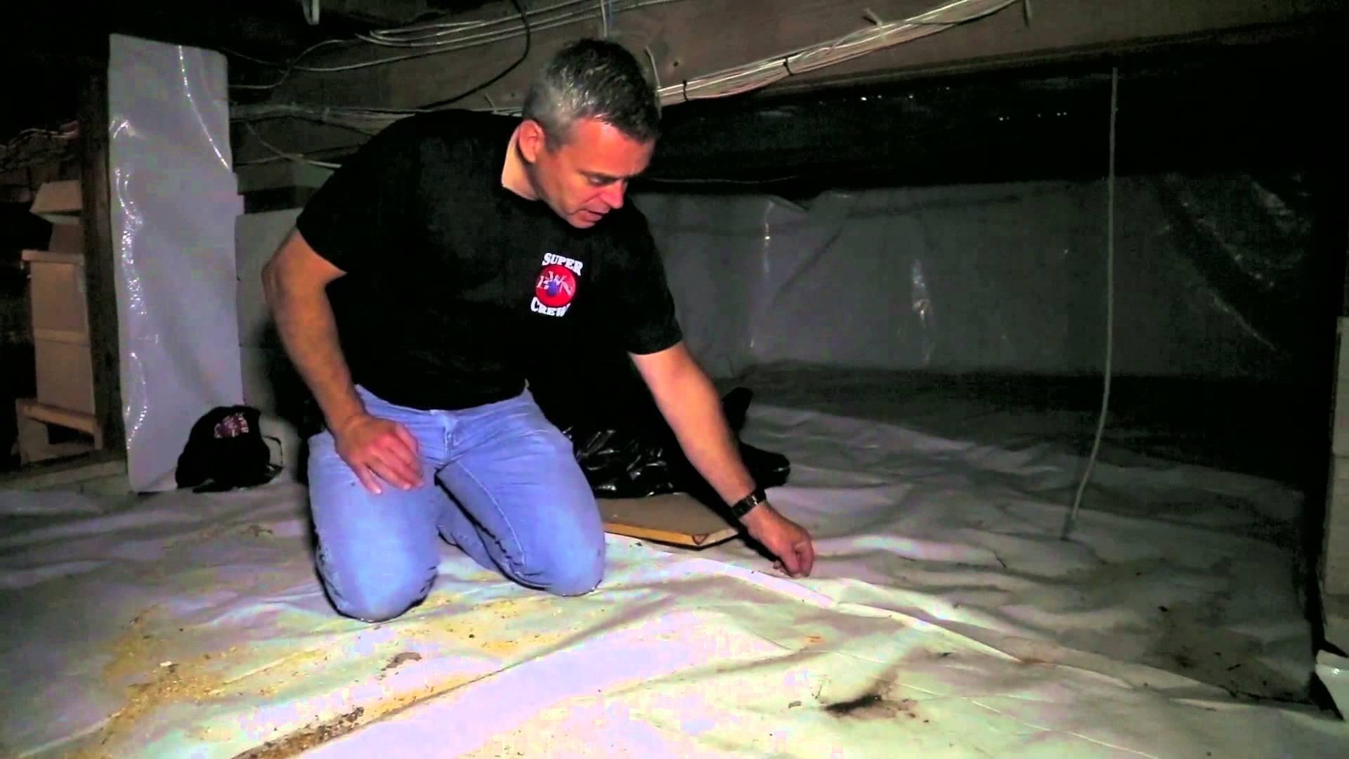 Basement Waterproofing Nationwide Bel Air Md