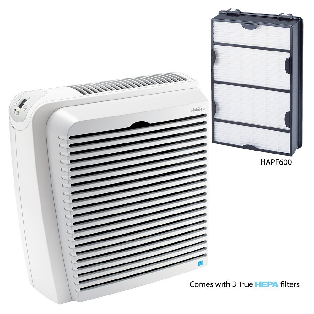 Best Air Purifier For Basement