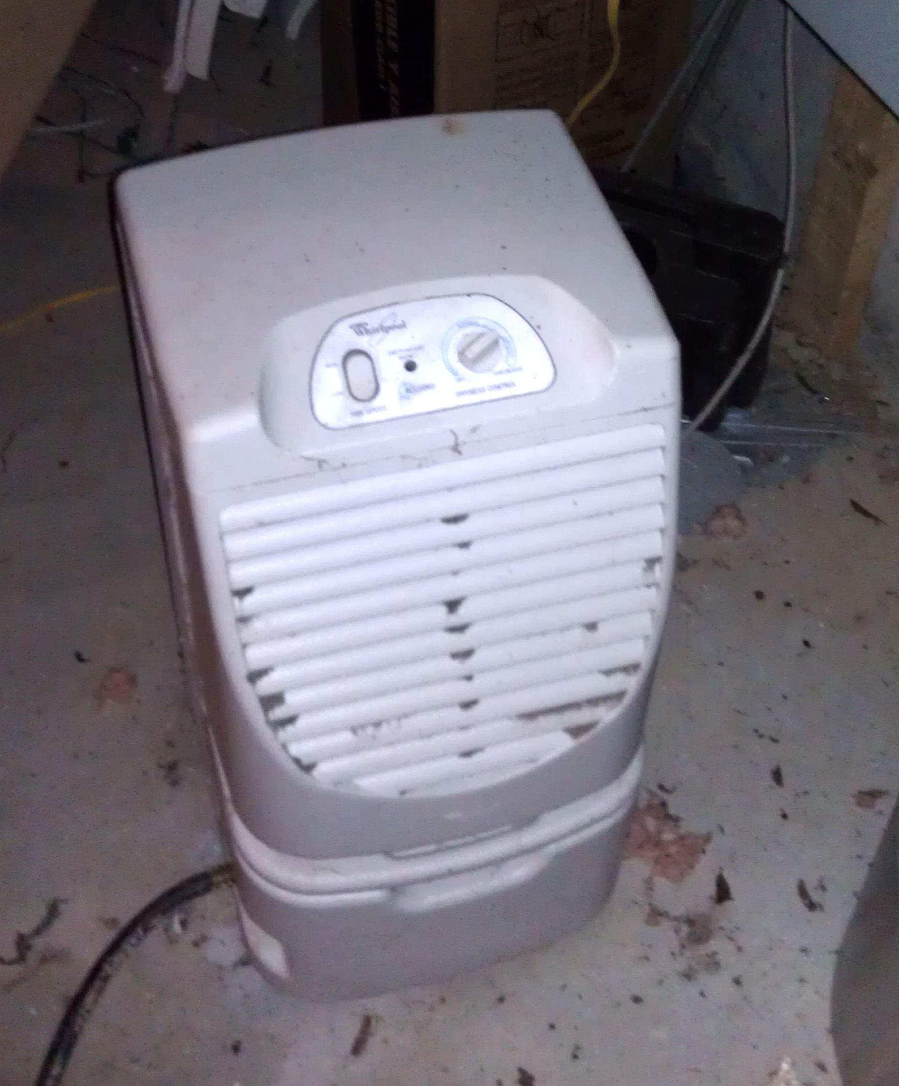 Best Basement Dehumidifier Setting