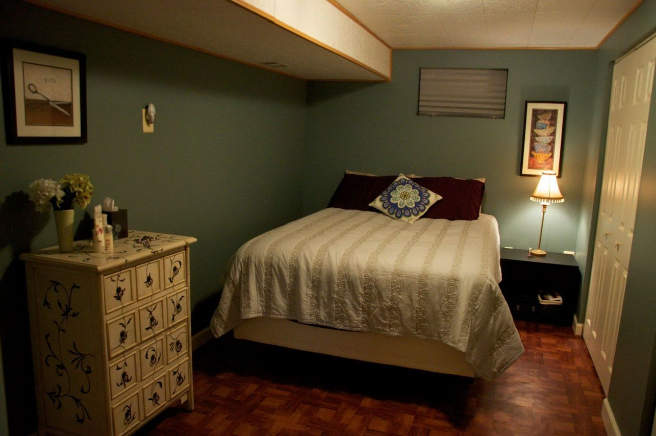 Best Colors For Basement Bedroom