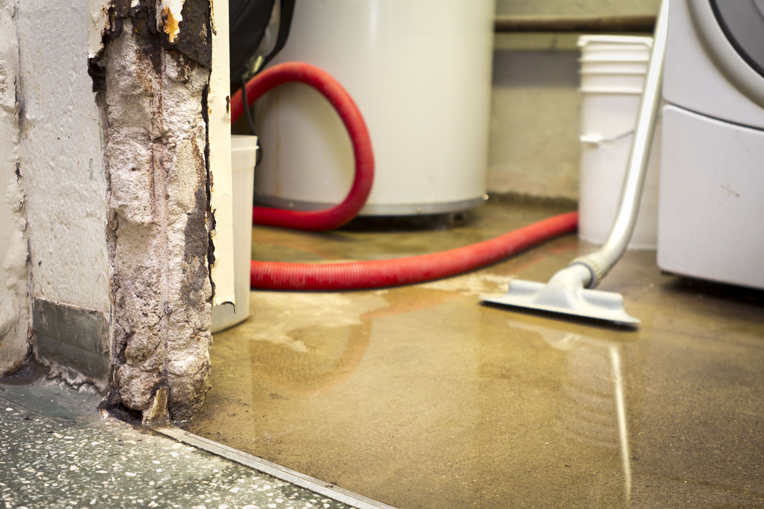 Get Water Out Of Basement Carpet