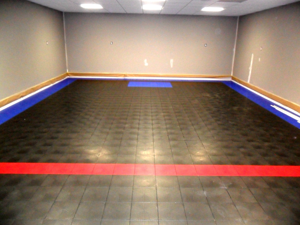 Permalink to Indoor Basement Sport Court