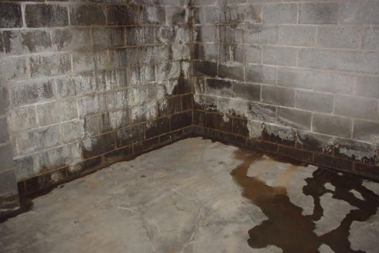 Sealing Damp Basement Walls