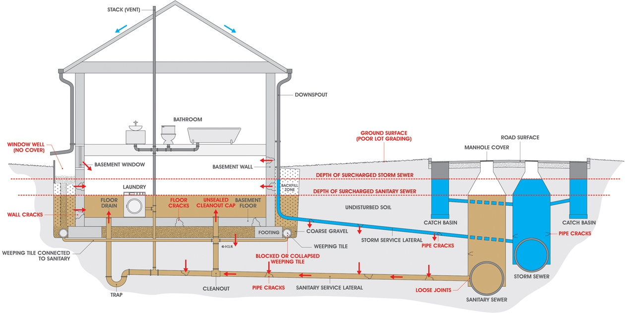 Sewer Backing Up Into Basement Shower