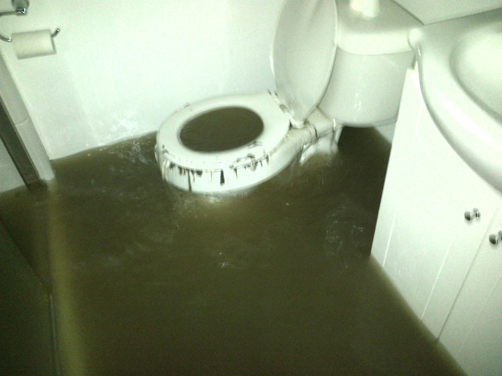 Toilets For Basements Upflush Toilets For Basements Upflush toilet for basement flush up toilets decoration 1600 X 1200