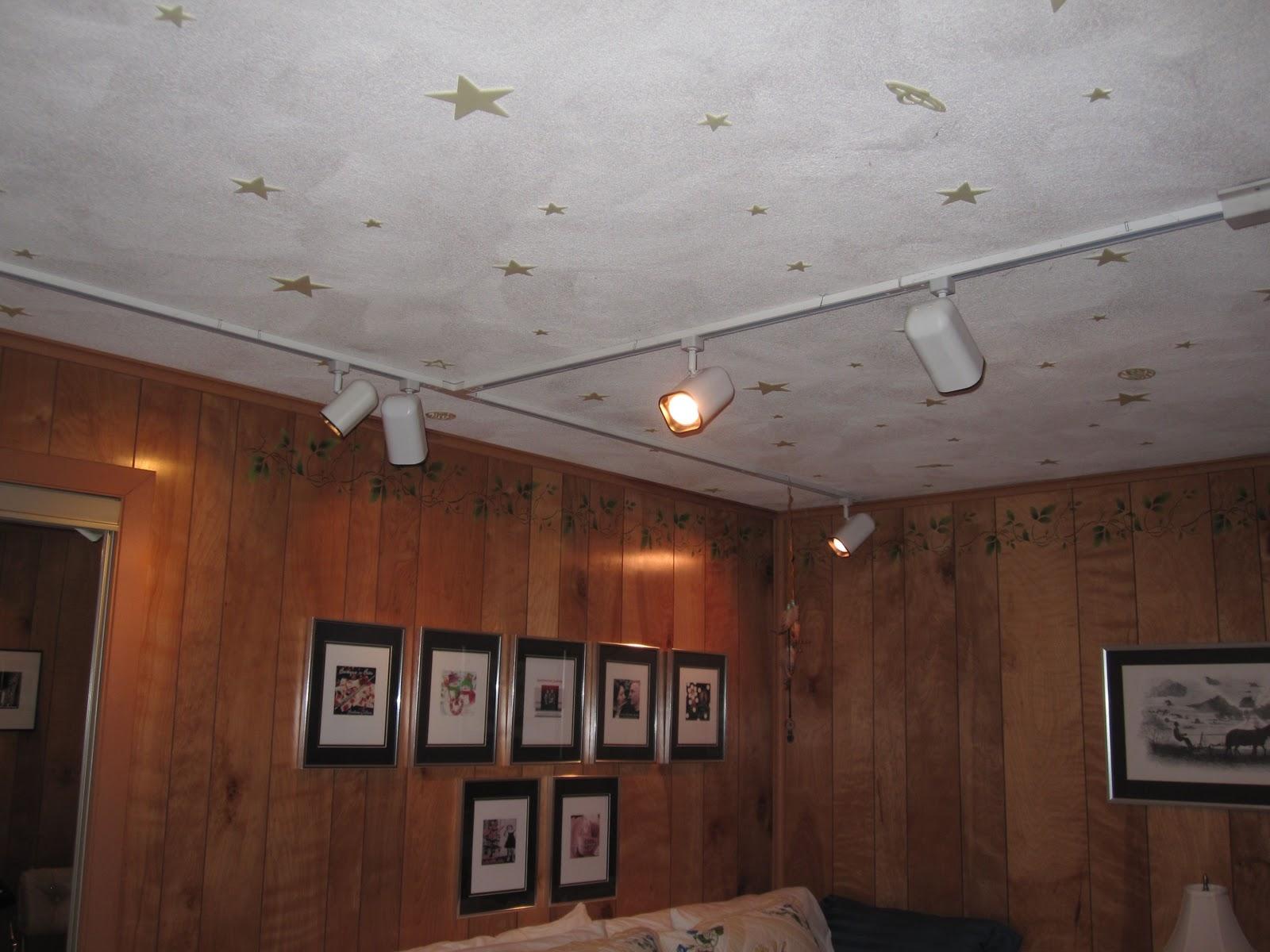 Track Lighting Basement Ceiling