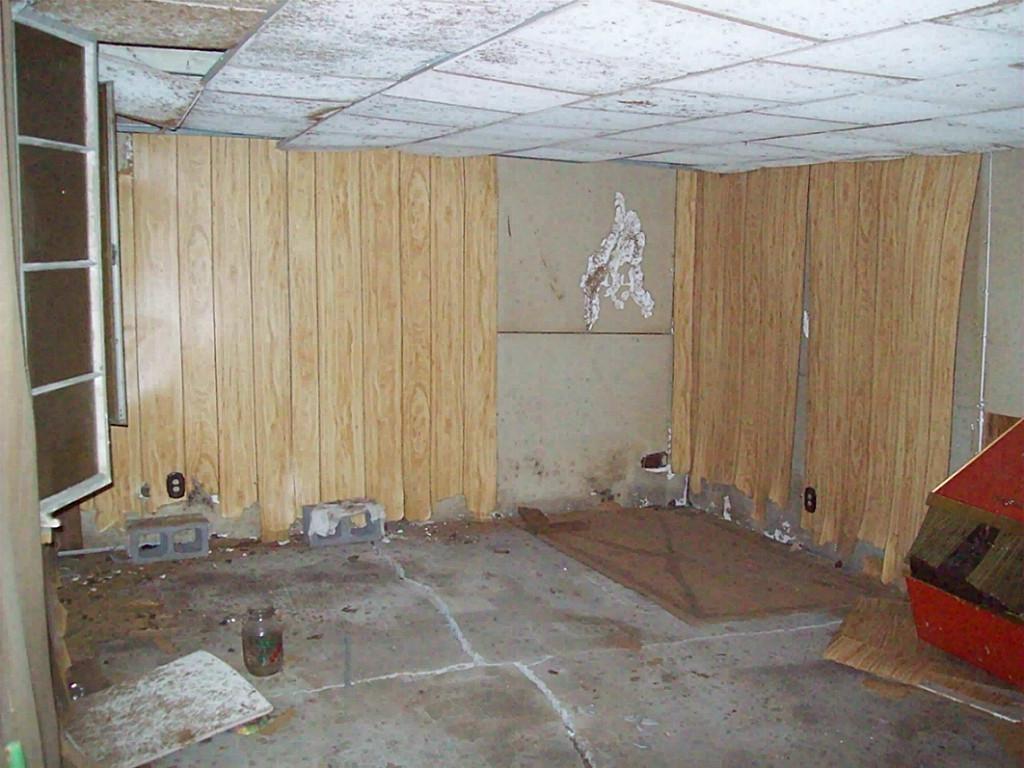 Warped Wood Paneling Basement