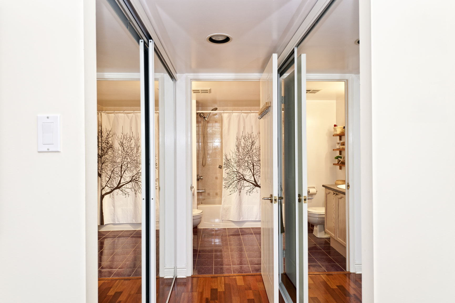 Bathroom Mirrored Closet Doors