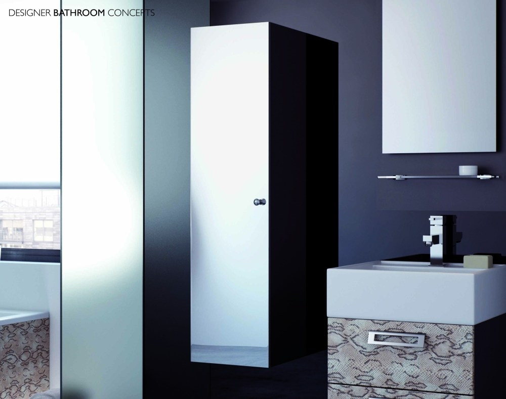 Tall Mirrored Bathroom Unit